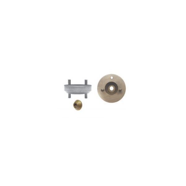 0279bl - Plaqueta Y Perno Iny. Bomba Volvo Delphi - 7135-487