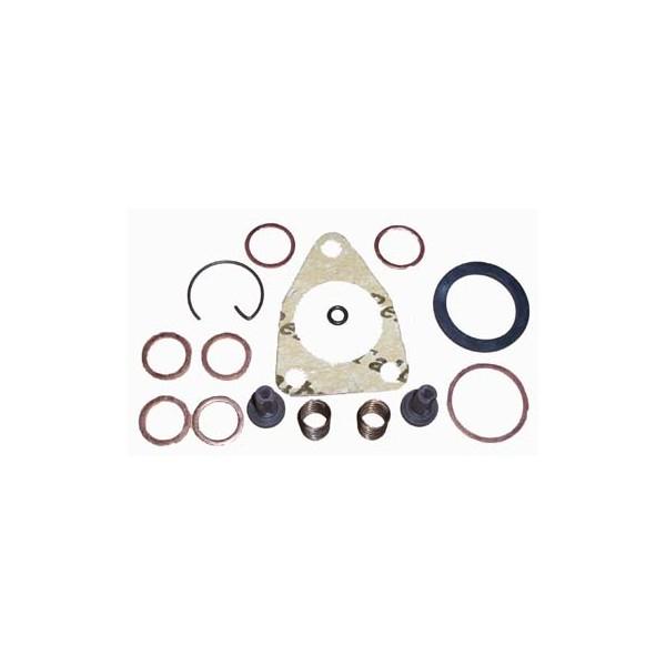 0079bl - Bombita Alimentadora Bosch Con Piston - 2447010004